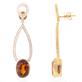 14K Hessonite Gold Earrings (de Melo)