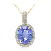 14K Tanzanite Gold Necklace (Lance Fischer)