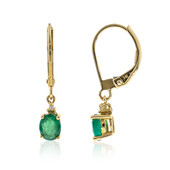 14K AAA Zambian Emerald Gold Earrings (CIRARI)