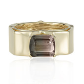 14K Watermelon Tourmaline Gold Ring (de Melo)