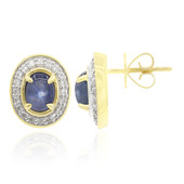 9K Blue Star Sapphire Gold Earrings