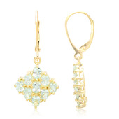 9K Paraiba Tourmaline Gold Earrings