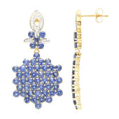 18K Ethiopian Sapphire Gold Earrings