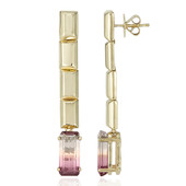 14K Watermelon Tourmaline Gold Earrings (de Melo)
