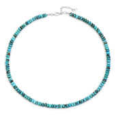 Arizona Turquoise Silver Necklace