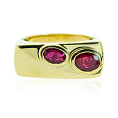 14K Ruby Gold Ring (de Melo)