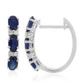 18K Ceylon Sapphire Gold Earrings (CIRARI)