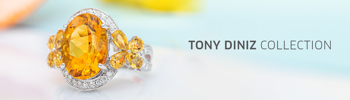 Tony Diniz Collection
