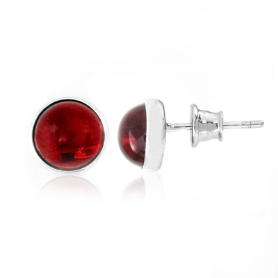Colombian red Amber Silver Earrings