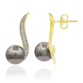 Tahitian Pearl Silver Earrings