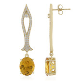 14K Golden Beryl Gold Earrings (de Melo)