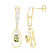 18K Andradite Garnet Gold Earrings