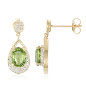 14K Nigerian Paraiba Tourmaline Gold Earrings (Lance Fischer)