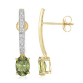 18K Namibian Demantoid Gold Earrings