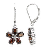 Chocolate Zircon Silver Earrings