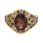 9K Mozambique Garnet Gold Ring
