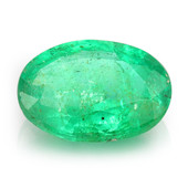 Zambian Emerald other gemstone