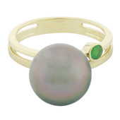 9K Tahitian Pearl Gold Ring