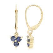 9K Fancy Sapphire Gold Earrings