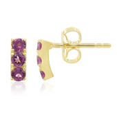 9K Rhodolite Gold Earrings