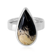 Petrified Palm Wood Silver Ring