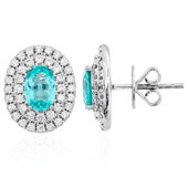 18K Brazilian Paraiba Tourmaline Gold Earrings (de Melo)