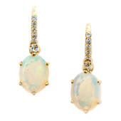 14K Welo Opal Gold Earrings (Lance Fischer)