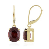 18K Mahogany Zircon Gold Earrings