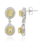 18K Yellow Diamond Gold Earrings (CIRARI)