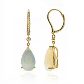 14K AAA Welo Opal Gold Earrings (CIRARI)