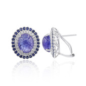 18K Tanzanite Gold Earrings (CIRARI)