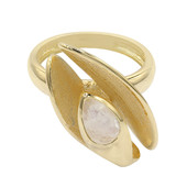 Rainbow Moonstone Silver Ring (MONOSONO COLLECTION)