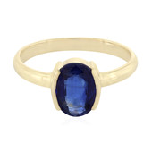 9K Nepal Kyanite Gold Ring