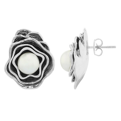 Freshwater pearl Silver Earrings (MONOSONO COLLECTION)