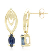 10K Ethiopian Sapphire Gold Earrings (Molloy)