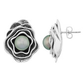 Tahitian Pearl Silver Earrings (MONOSONO COLLECTION)