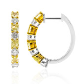 18K SI Yellow Diamond Gold Earrings (CIRARI)
