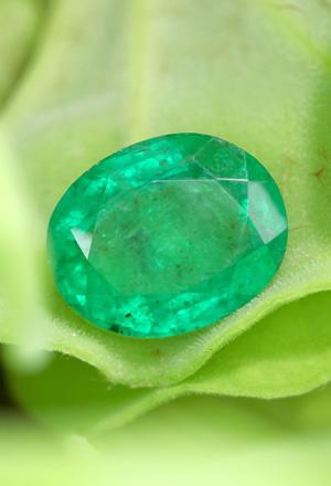 Bahia Emerald
