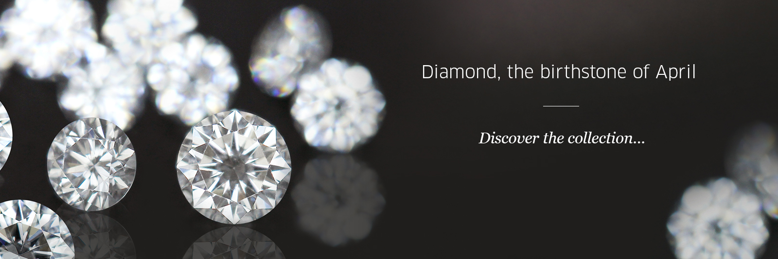 Diamaond Jewellery at Rocks & Co.